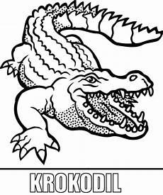 Malvorlagen Tiere Krokodil Malvorlage Krokodil