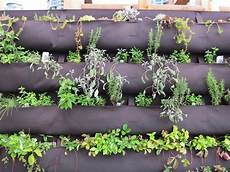 Information About Diy Herb Walls Tips On Vertical