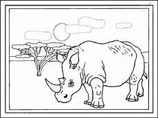 Bilder Zum Ausmalen Nashorn Ausmalbild Nashorn