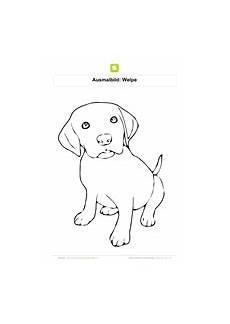 ausmalbilder hunde kostenlose ausmalbilder