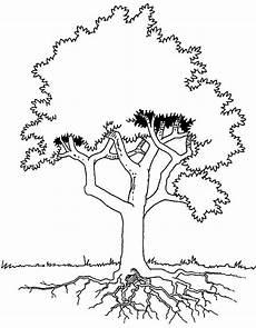 araguaney dibujo para colorear arbol araguaney dibujo para colorear imagui