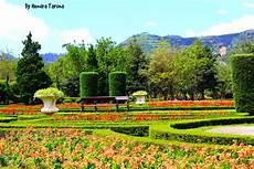 Taman Bunga Nusantara Syafikriatillah