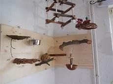 Wellensittich Spielzeug Selber Bauen - wandspielplatz f 252 r wellensittiche selbstgebaut parrot