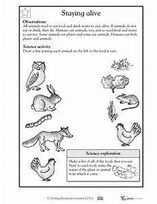 animal science worksheets for high school 14040 how many legs does this animal worksheets activities greatschools rekenen