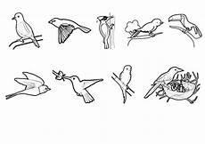 Malvorlage Viele Tiere Ausmalbild Tiere V 246 Gel Zum Ausmalen Kostenlos Ausdrucken