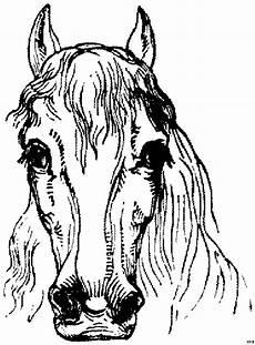 Malvorlagen Pferdekopf Pferdekopf Vorne Ausmalbild Malvorlage Pferde