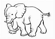 malvorlagen zum ausdrucken ausmalbilder elefant kostenlos 6