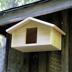 mourning dove house plans mourning dove bird house bing images birds bird barn