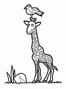 giraffe coloring pages and print giraffe