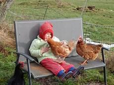Hühner Im Garten - h 252 hner im garten page 19 mein sch 246 ner garten forum