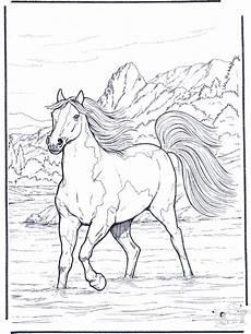 Ausmalbilder Pferde Im Winter Pferd Im Wasser Ausmalbilder Pferde