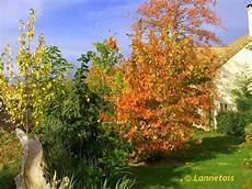 ce dans mon jardin que faire ce mois dans mon jardin annetois que faire en