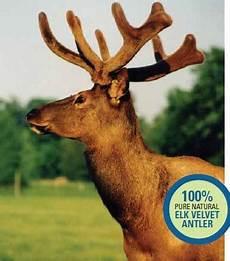 caneva is a canadian company selling elk velvet antler