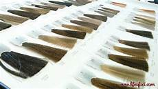 Elgon Color Chart Elgon Professional Hair Color From Milan Now In Manila