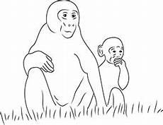 Ausmalbilder Zootiere Zeichnen Ausmalbild Affe Im Zoo In 2020 Ausmalen Ausmalbilder