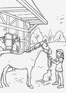 Ausmalbilder Pferde Haflinger Ausmalbilder Pferde Fohlen Kinder Zeichnen Und Ausmalen