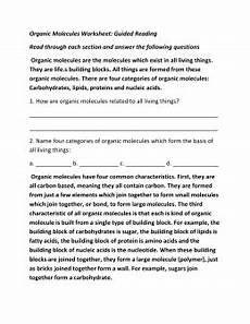 organic molecules worksheet review