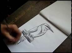 el turpial para dibujar imagenes del turpial en caricatura imagui