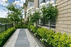 deko garten modern pflegeleichter garten modern gruen pflanzen baeume kies deko vorgarten garden modern und