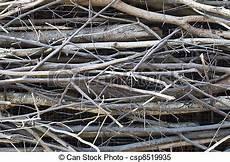 brindilles de bois images de brindilles bois paquet csp8519935 recherchez