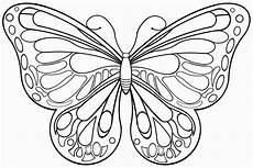 Ausmalbilder Schmetterling Drucken Ausmalbilder Schmetterling Und Malvorlagen Malvorlage