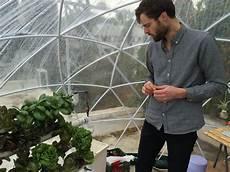 garten iglu selber bauen garden igloo grow tasty food and cannabis in this modern