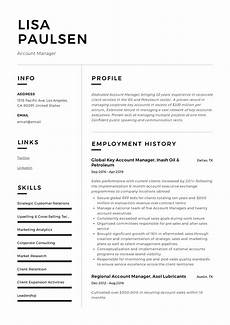account manager resume writing guide 12 resume exles
