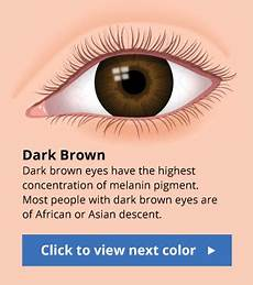 Human Eye Color Chart With Facts