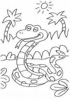 Malvorlagen Tiere Kostenlos Quiz Kostenlose Malvorlage Tiere Schlange Im Dschungel Zum