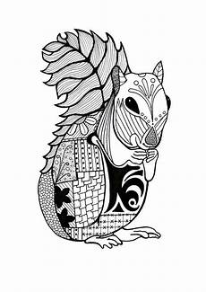 intricate squirrel coloring page animal coloring pages squirrel coloring page giraffe