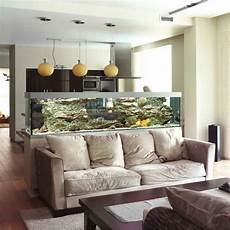 such a nice idea use the aquarium as a partition in your