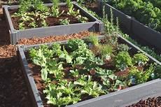jardin carré potager jardin carr 233 avec les meilleures collections d images
