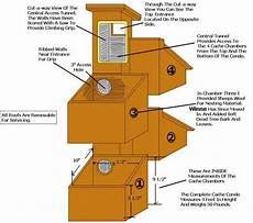 flying squirrel house plans squirrel nesting box google search small pet homes and