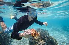 snorkeling in micronesia resorts packages caradonna adventures
