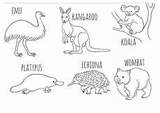 colouring in activities for australia day 2020