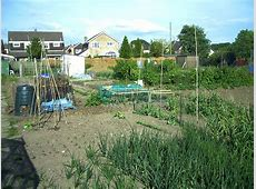 Planning the Allotment Crop Rotation Plan   Finished!