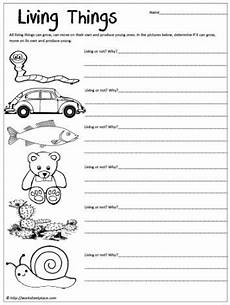 science worksheet living things 12282 8 best living and non living images on teaching science worksheets and year 2
