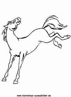 Ausmalbilder Pferde Haflinger Ausmalbilder Pferd 16 Tiere Zum Ausmalen Malvorlagen