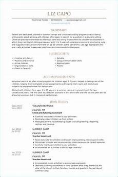 volunteer work resume exles resume skills resume