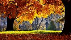 Beautiful Fall Desktop Backgrounds Hd