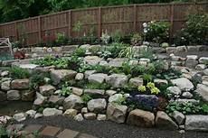 steine für garten steingarten gestalten zwischen den steinen ist platz f 252 r