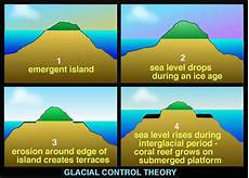 how do coral reefs form sciences