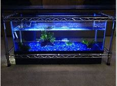 10 gallon aquarium filter system