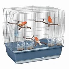 uccellini in gabbia le gabbie dei canarini