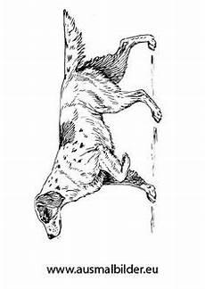 Hunde Ausmalbilder Dackel Ausmalbild Kleiner Dackel In 2020 Ausmalbilder Hunde