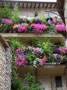 Balcony Garden 1001 Gardens