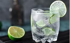 Wie Trinkt Gin Mit Tonic Water Pur Cocktails