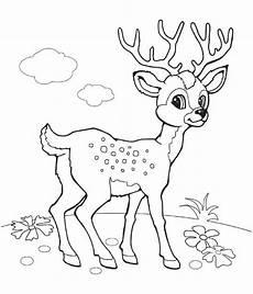 раскраска олень детские раскраски распечатать бесплатно