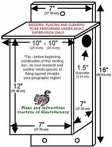 squirrel houses plans squirrel home plans labels flying squirrels squirrel