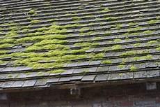 entretien toiture ardoise nettoyage d une toiture en ardoise ardoise angers